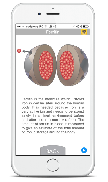 Mobile screenshot of ferritin description with medical illustrations